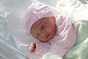 Emily Marie Riffe, Prostějov, narozena 1. prosince v Prostějově, míra 49 cm, váha 2900 g
