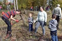 Výsadba stromů. Ilustrační foto