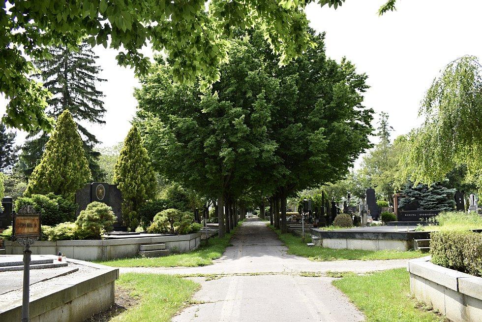 Městský hřbitov v Prostějově - 9.6. 2020