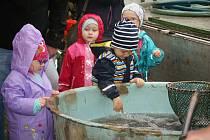 Výlov Podhradského rybníka v Plumlově - 3. listopadu 2018