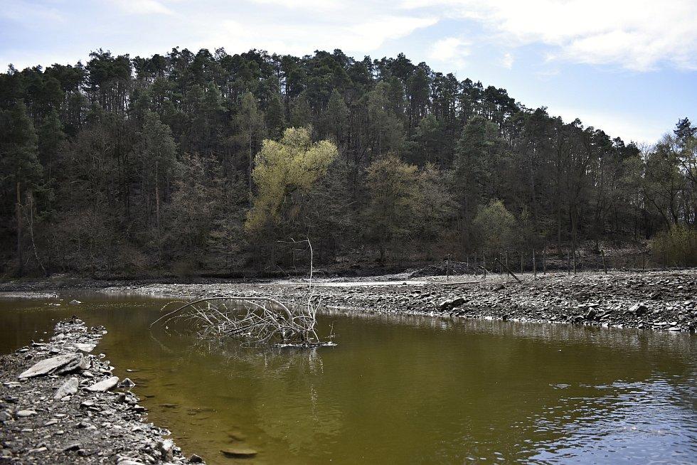Sedimentační zdrž s mokřadem u vzdutí plumlovské přehrady. 22.4. 2021