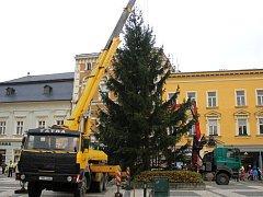 Vánoční smrk dorazil na prostějovské náměstí