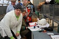 Výstava zvířectva v Plumlovské ulici v Prostějově