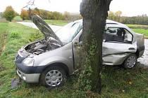 Řidička dostala smyk a narazila do stromu.