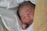 Adéla Šelmeci, Brodek u Prostějova; narozena 1. ledna v Prostějově; míra 49 cm, váha 3100 g