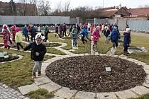 Předjaří v prostějovské botanické zahradě - na návštěvy chodí i děti z prostějovských škol a školek. Na snímku si hrají v nové části