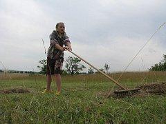 Ochránci přírody kosí na Vápenici trávu, aby napodobili přírodní podmínky, které zde kdysi panovaly