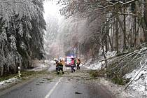 Popadané stromy na trase Stínava - Malé Hradisko ve středu před jedenáctou hodinou