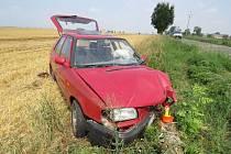 Nehodu podle slov řidička zavinila nepozornost. Tu způsobila její kočka.