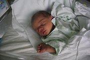 Milan Zelený, Dětkovice, narozen 28. července v Prostějově, míra 48 cm, váha 2750 g