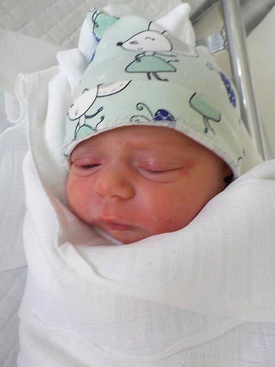 Hedvika Kořenková, Brodek u Konice, narozena 12. července 2021 v Prostějově, míra 46 cm, váha 2450 g