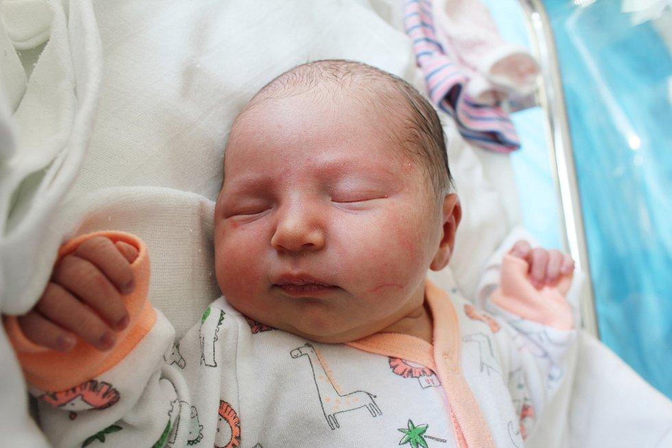 Ema Musilová, Bedihošť, narozen 12. října 2019 v Prostějově, míra 50 cm, váha 3150 g