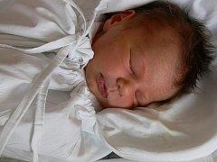 Anna Zvozilová, Kostelec na Hané, narozena 23. března, 50 cm, 3500 g