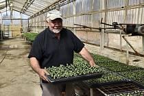 Zahradnictví Atanasov v Prostějově - Zelenina od bulharských zahradníků zásobuje Prostějov již sedmdesát let. 16.4. 2020