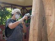 Houby na dřevěných sochách v prostějovském parku