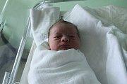 Izidor Grmela, Otinoves, narozen 25. listopadu v Prostějově, míra 53 cm, váha 3300 g