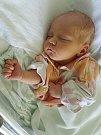 Leona Paloncy, Prostějov, narozena 25. srpna v Prostějově, míra 48 cm, váha 2550 g
