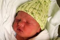 Max Kremzer, Prostějov, narozen 13. listopadu, 50 cm, 3000 g