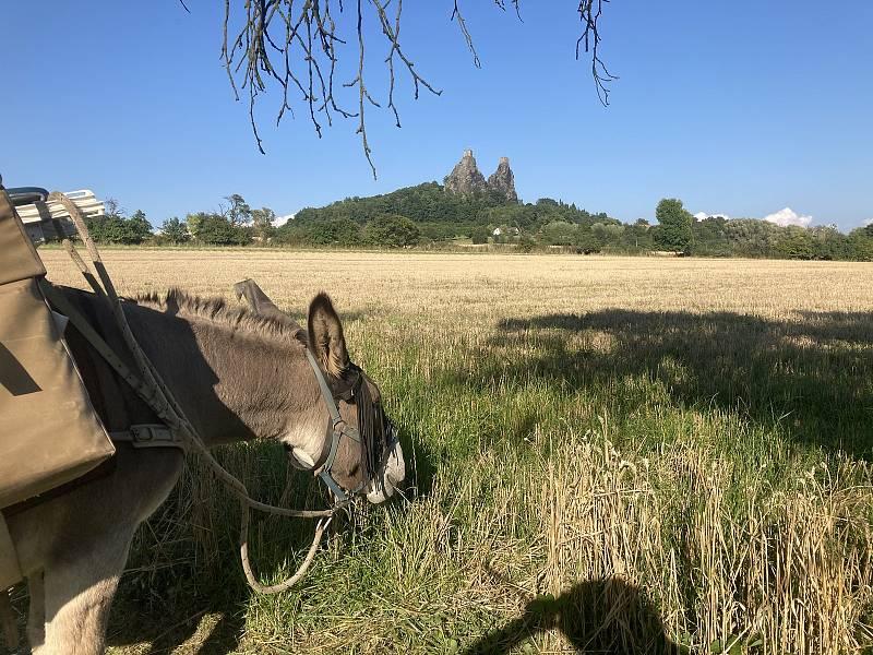 Německý dobrodruh Michael Rinderle putuje se svým oslem napříč republikou.