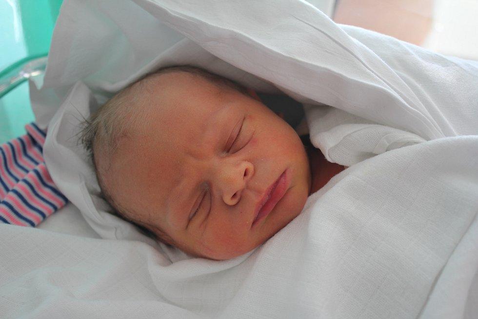 Filip Franc, Niva, narozen 11. října 2019 V Prostějově, míra 50 cm, váha 3450 g