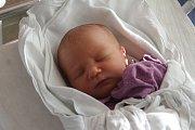 Karolina Koudelková, Prostějov, narozena 30. listopadu v Prostějově, míra 46 cm, váha 2550 g
