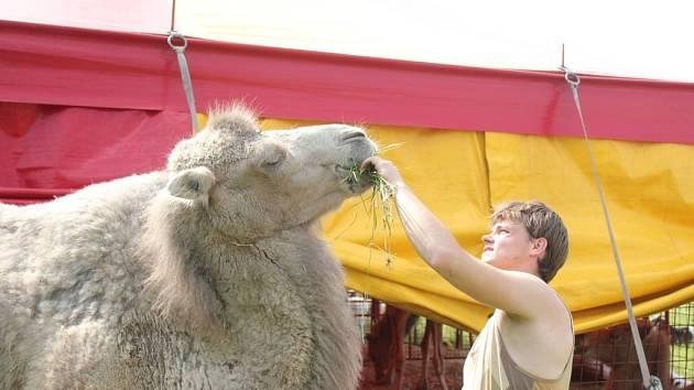 Cirkus Humberto v Prostějově
