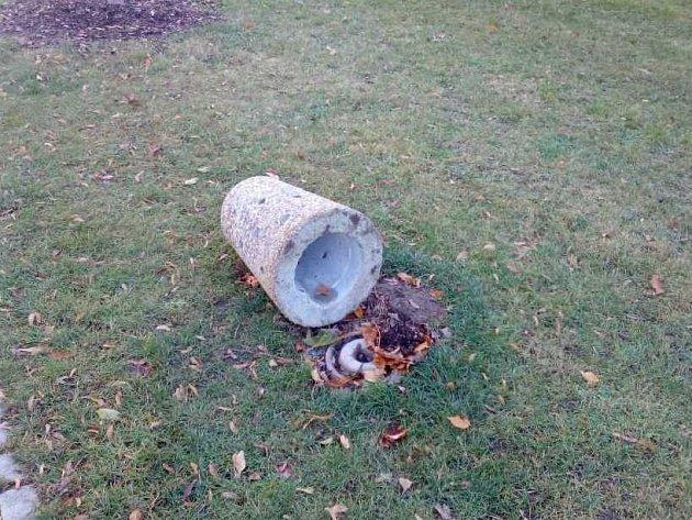 Jeden ze psích pisoárů se stal obětí zatím neznámých vandalů. Objekt připomínající patník nedaleko průchodu vprostějovských hradbách někdo vyvrátil. Věc redakce Deníku nahlásila odboru Správy a údržby majetku města.