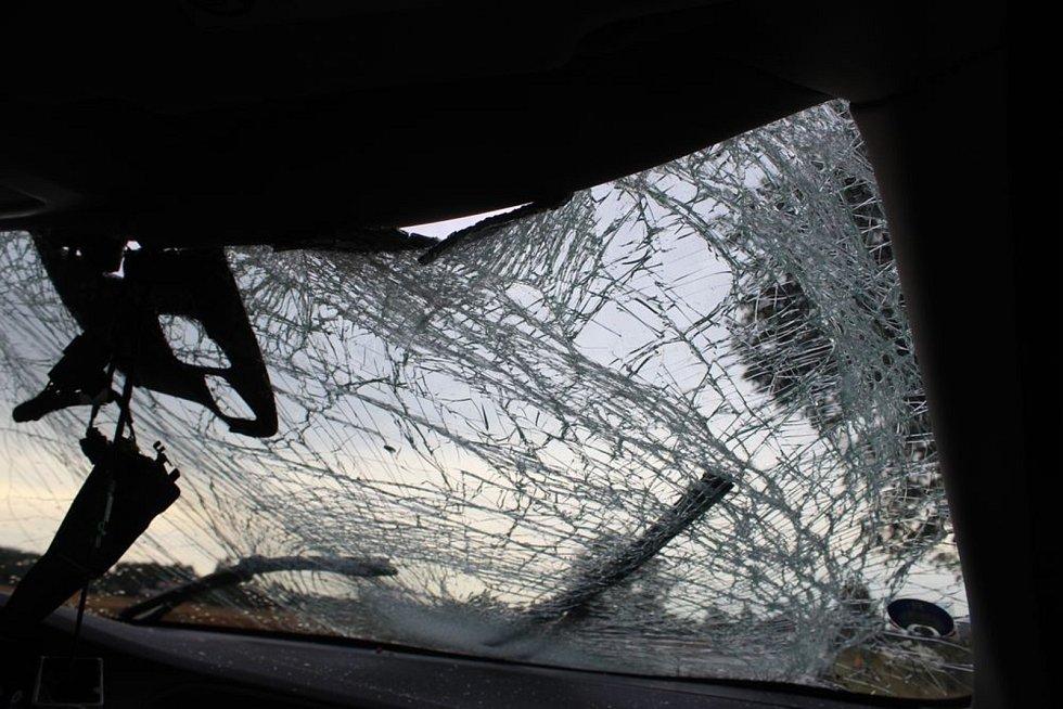 Řidič Volva neměl jak srážce předejít. Srnec nepřežil