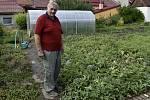 Zdeněk Dopita pěstuje melouny ve Služíně na zahradě.