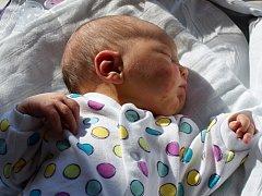 Sára Navrátilová, Prostějov, narozena 18. dubna, 52 cm, 3700 g