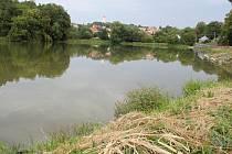 Rybník Bidelec v Plumlově