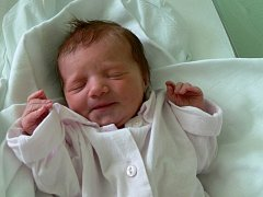 Hana Dittmannová, Prostějov, narozena 20. září, 49 cm, 2950 g