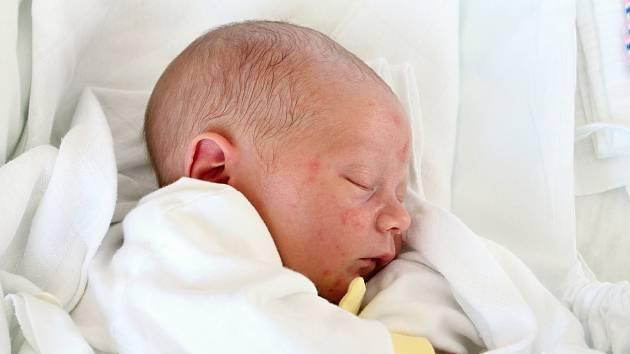 Otmar Hudeček, Pustiměř, narozen 13. února 2019 v Prostějově, míra 48 cm, váha 2950 g