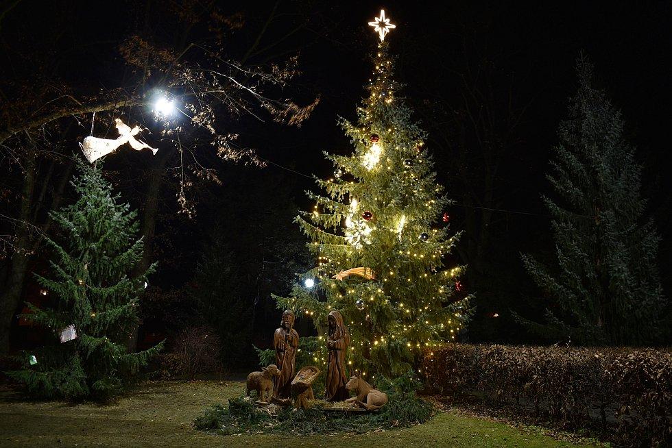 Vánoční strom v Loučné nad Desnou.
