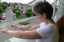 Ostré hrany skleněných žaluzií v domě v Jezdecké ulici v Prostějově jsou nebezpečné dětem i dospělým