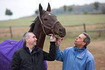 Kůň Nikas, vpravo trenér Stanislav Popelka, vlevo majitel Petr Kupka