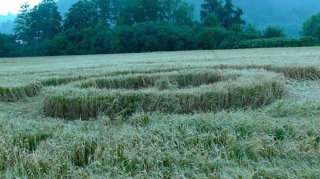 Loňské kruhy v obilí u Plumlovské přehrady
