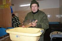 Na Prostějovsku se začaly nakupovat ryby na vánoce