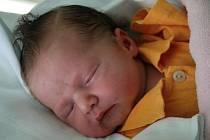 Anežka Trávníčková, Bohuslavice, narozena 2. ledna, 52 cm, 3550 g