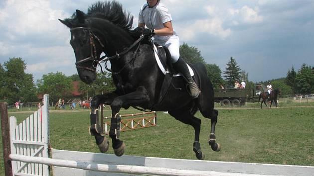 V letech přes překážky se koně překonávaly.