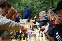 Šachisté v akci