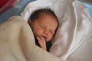 Radek Šroft, Prostějov, narozen 12. října v Prostějově, míra 51 cm, váha 3500 g