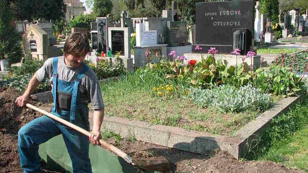 Nová alej jehličnanů na městském hřbitově ještě není vysazená a už je trnem v oku některých pronajímatelů hrobů.