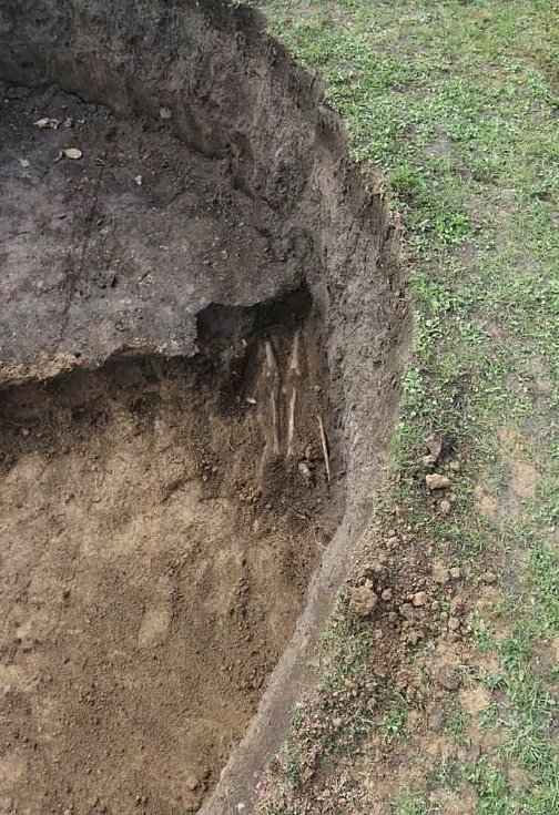 Tisíc let starý hrob nalezl čtyřicetiletý muž při kopání bazénu v Kralicích na Hané.