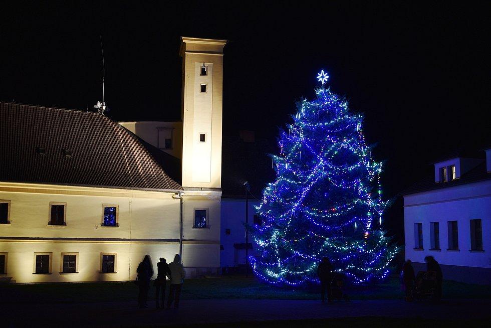 Vánoční strom v Zábřehu.