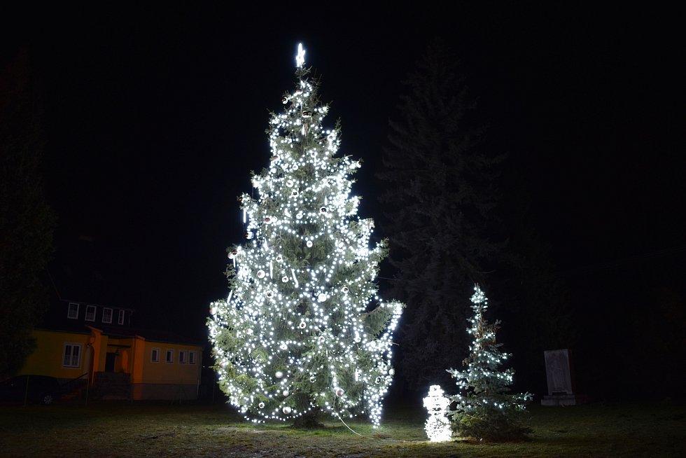 Vánoční strom v Lipové-lázních.