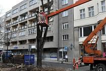 Kácení lípy v Netušilově ulici v Prostějově
