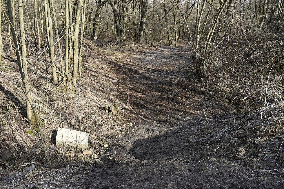 Biketrailová trať na Záhoří