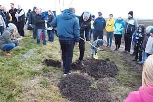 Mezi obcemi Skalka a Pivín se v sobotu 16. listopadu sázely stromky pro potomky.
