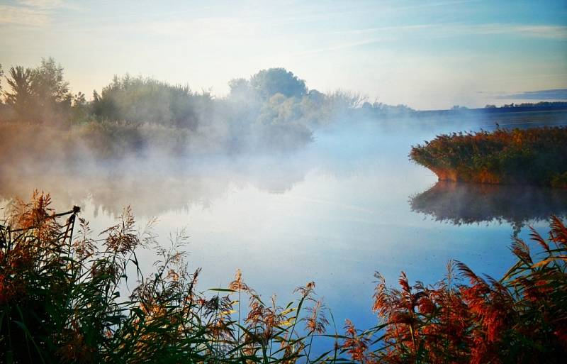 Podzimní říjnové svítání a mlha na Čelčickém rybníku.